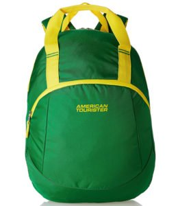 American Tourister Flint Green Casual Backpack