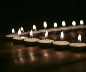 Solimo Wax Tealight Candles Set of 50